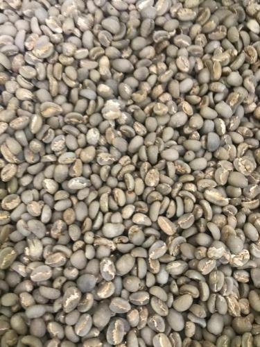 Arabica Sumatra Lintong Coffee